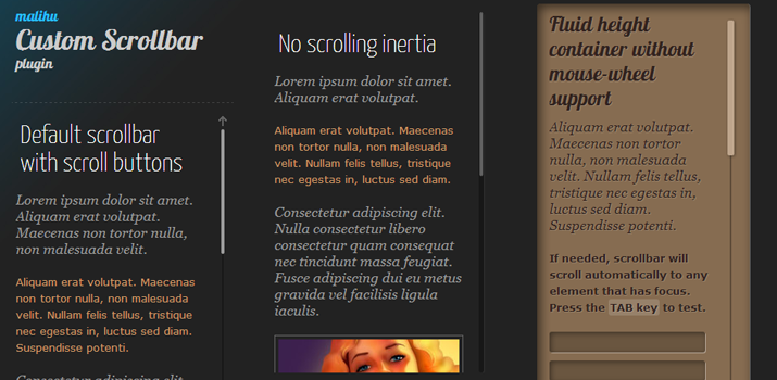 23-inner-content-scrollbars-jquery-plugin (1)