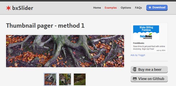 32-bxslider-jquery-image-thumbnail-slideshow-plugin
